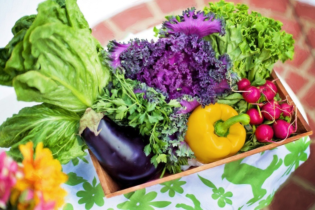 Eat Colorful Vegetables for Antioxidant Support