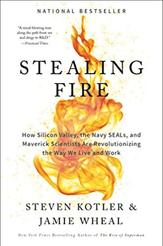 Stealing Fire: How Silicon Valley, the Navy SEALs, and Maverick Scientists Are Revolutionizing the Way